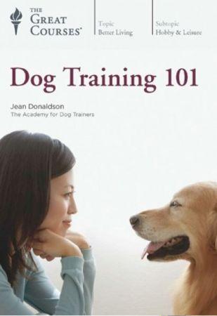 TTC Video Dog Training 101