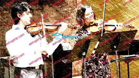 Cracking the Violin Code Violin Lessons for Beginners