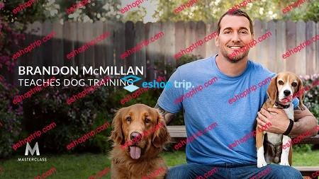 Masterclass Brandon McMillan Teaches Dog Training