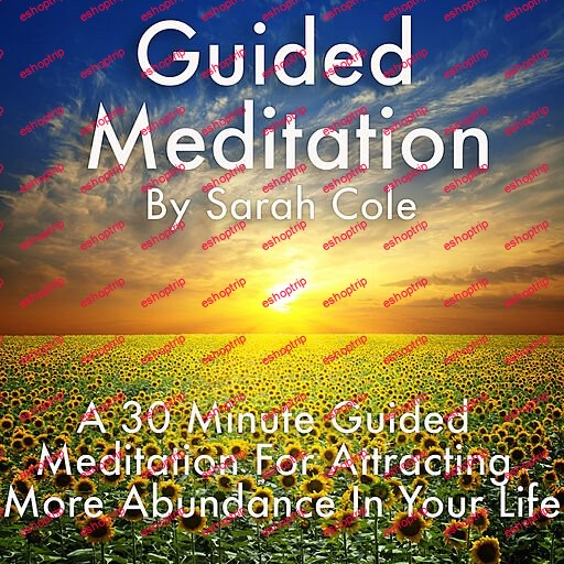 Guided Meditation A 30 Minute Guided Meditation for Attracting More Abundance in Your Life