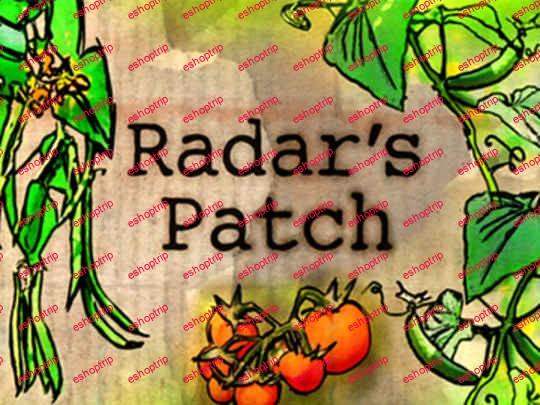 Radars Patch 2010