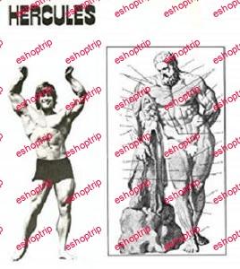 Hercules Bodybuilding System