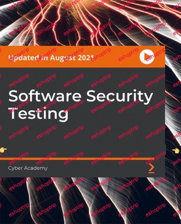 Software Security Testing 1