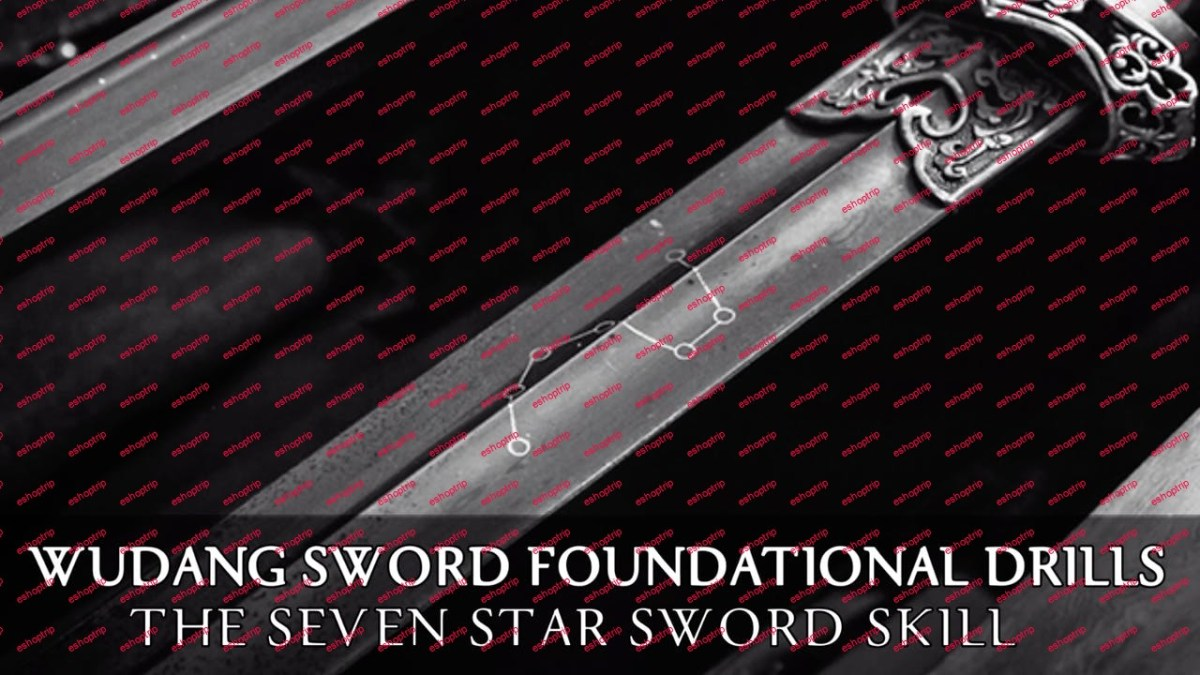 Wudang Sword Level 1 Foundational Drills