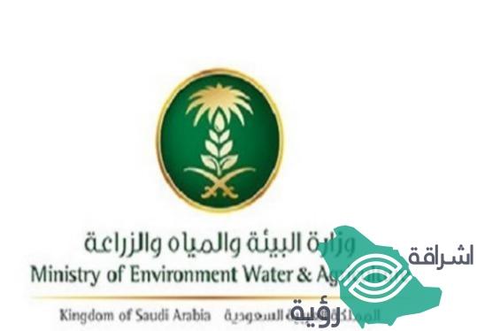 """""""وزارة البيئة"""" تعلن عن 142 مرشحاً تأهلوا في الدخول لأختبارات شغل الوظائف"""