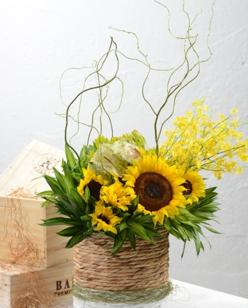 cheerful sunflowers
