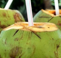 air kelapa untuk diabetes - eskayvie indonesia