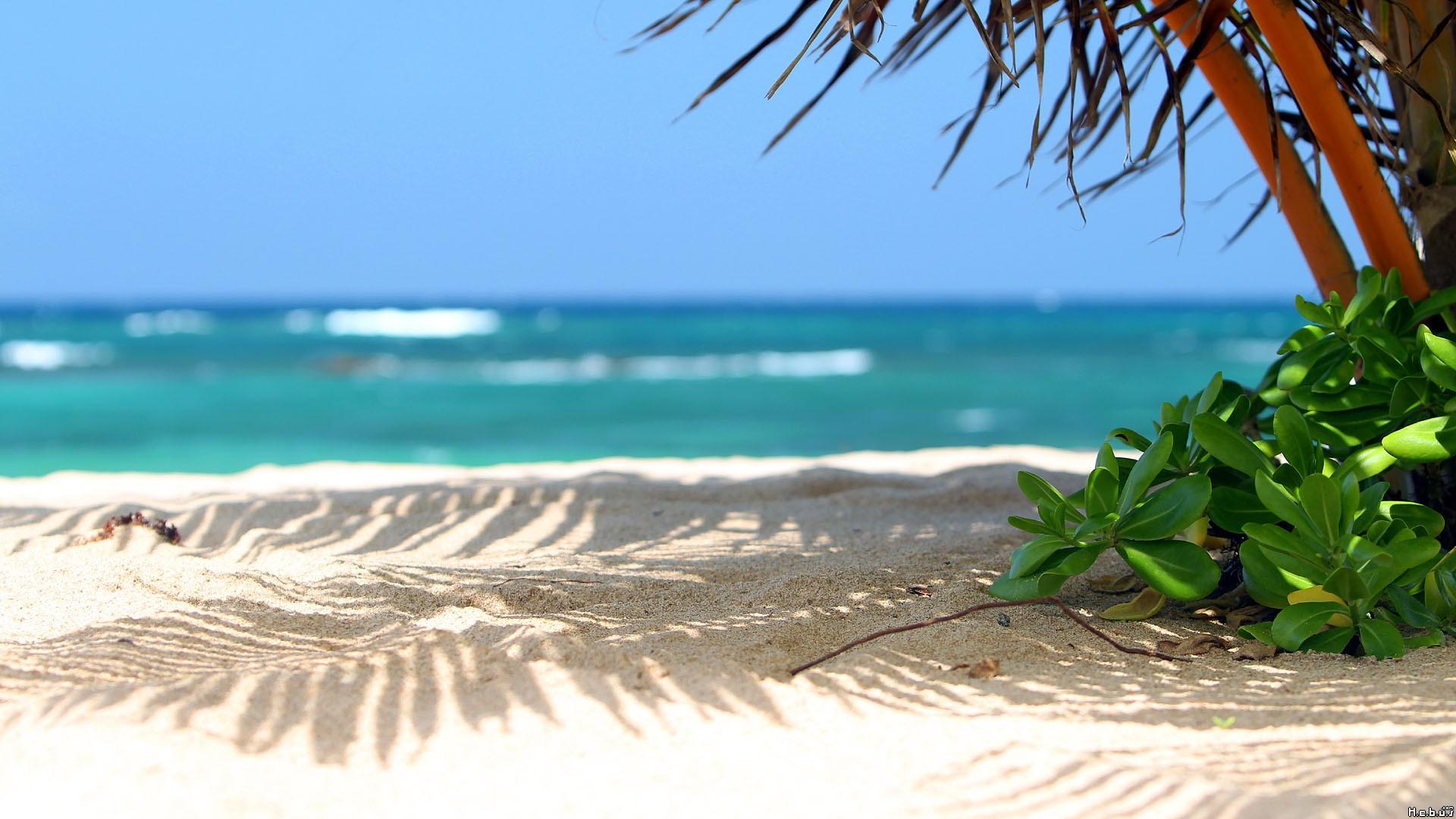 beautiful-beach-scenery-1 (1920×1080)   scenery board