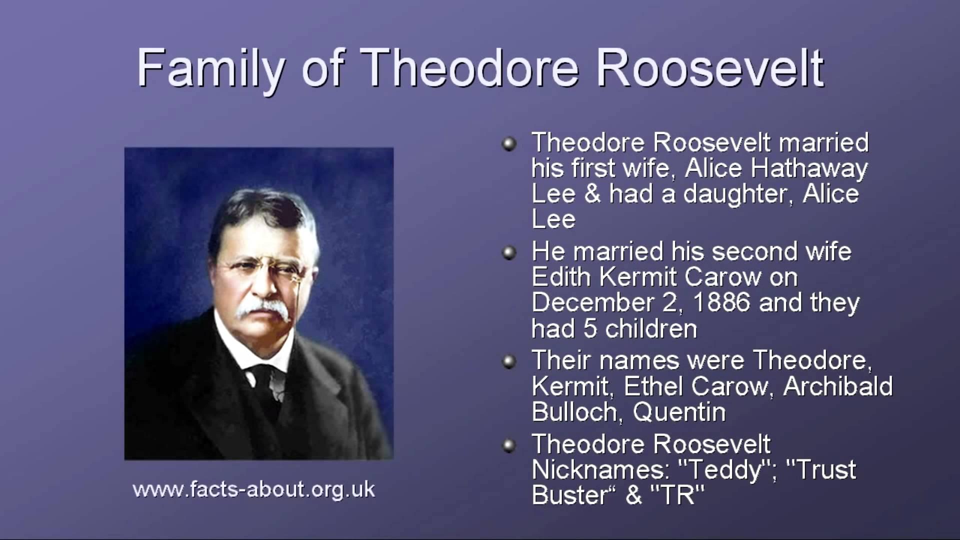 Theodore Roosevelt Wallpaper