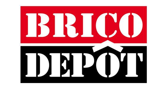 logo brico depot