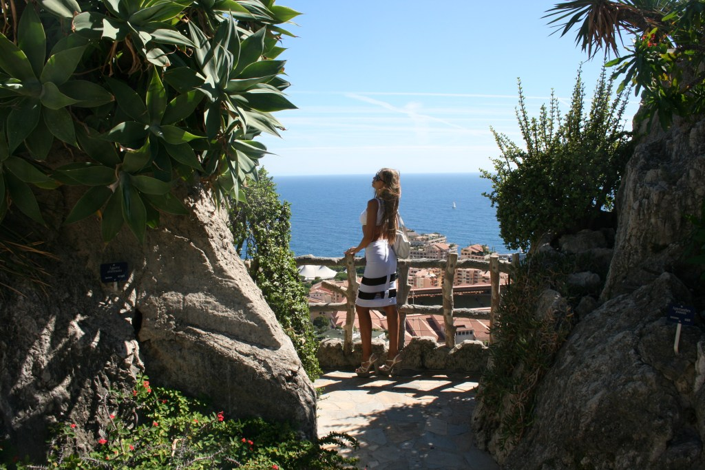View on Monaco, between beautiful Agave attenuata