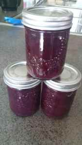 BLUE AND BLACK BLUEBERRY SAUCE
