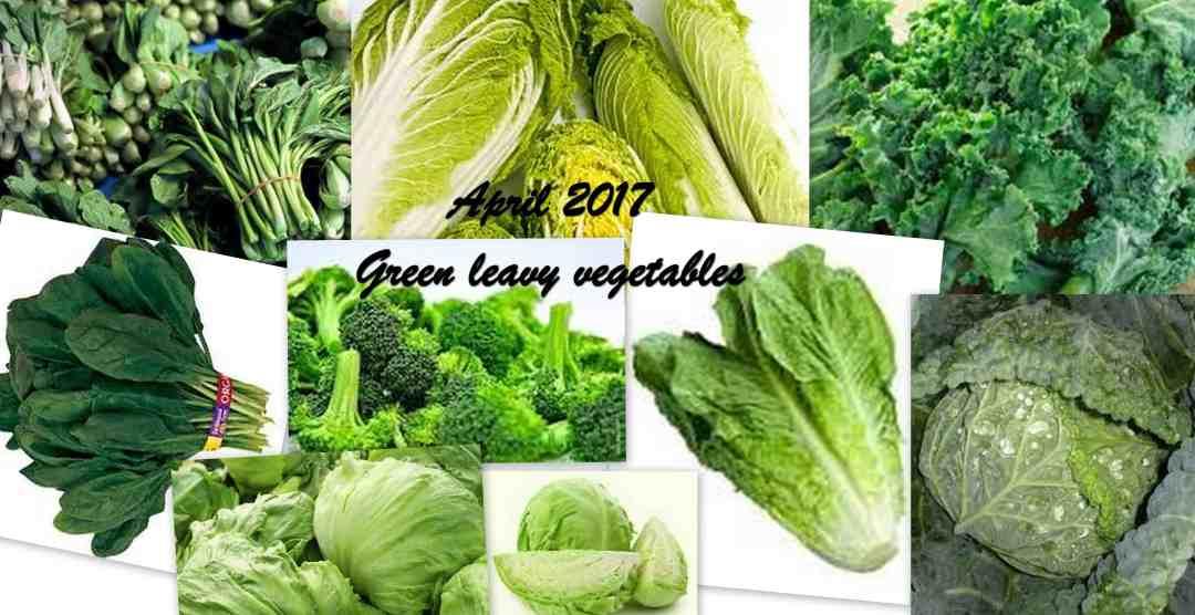 TRH Green leavy April 2017