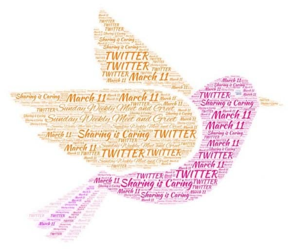 #6: Twitter – Sunday Weekly Meet and Greet
