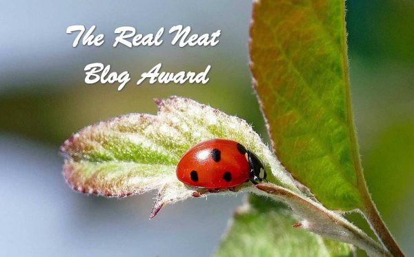 The Real Neat Blog Award #2