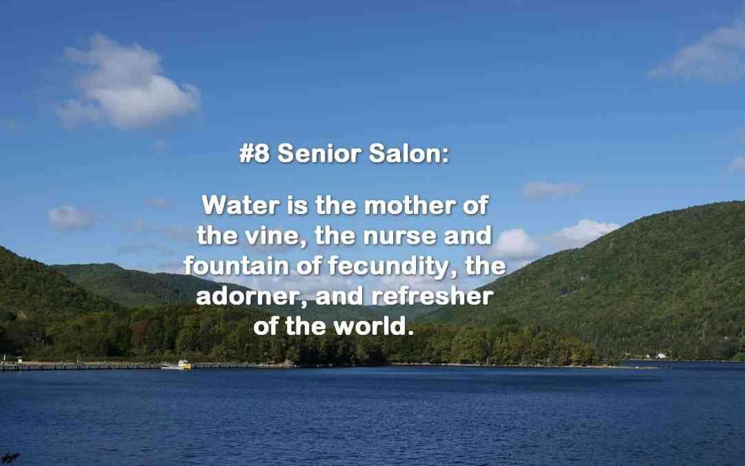 SENIOR SALON 2019 ROUNDUP: Feb 25-March 1, 2019