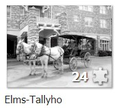 Elms Tallyho