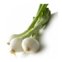 cebolla-ecologica-tierna-manojo
