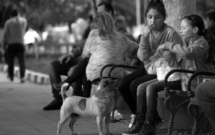 Sila M. Calderón reiteró que erradicar la pobreza infantil es uno de los retos del país