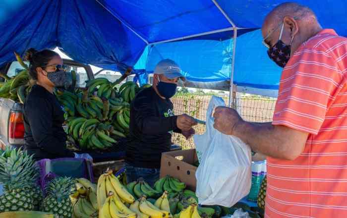 Otorgarán incentivos para compra de frutas y vegetales