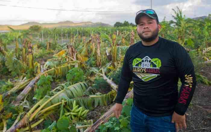 $3.4 millones en pérdidas agrícolas por tormenta