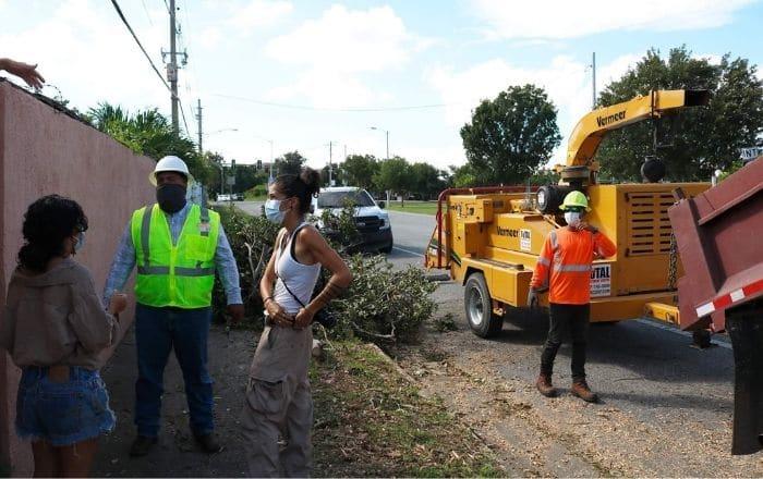 Comunidad interviene para evitar corte de árboles nativos