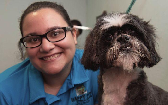 Convierten su casa en hotel para mascotas