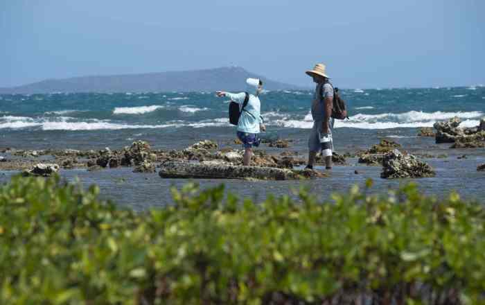 Invitan a limpiar la playa de La Guancha