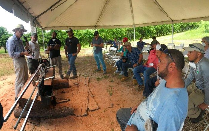 Servicio Forestal beca entidad para la recuperación y reutilización de madera