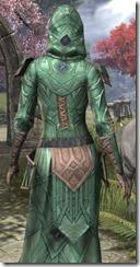 Ancient Orc Homespun Robe - Female Close Back