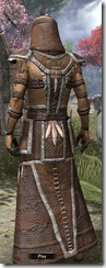 Argonian Homespun Robe - Male Back