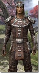 Argonian Iron - Male Close Front