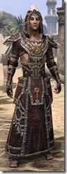 Argonian Spidersilk - Male Robe Front