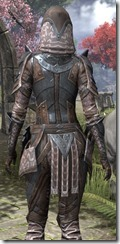 Assassin League Iron - Female Close Back