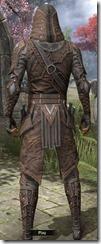 Assassin League - Male Back