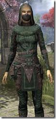 Assassins League Shirt - Female Close Front