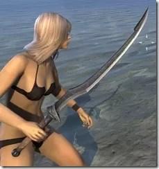 Abah's Watch Iron Sword 2