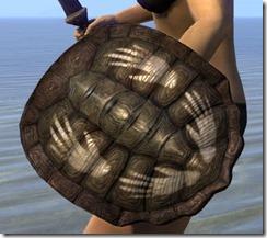Argonian-Maple-Shield_thumb.jpg