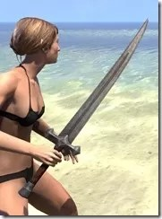 Khajiit Steel Sword 2