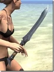 Militant-Ordinator-Iron-Dagger-2_thumb.jpg