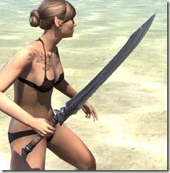 Militant Ordinator Iron Sword 2