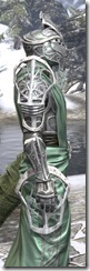 Apostle Homespun - Argonian Male Robe Close Side