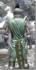 Apostle Homespun - Argonian Male Shirt Close Rear