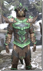 Buoyant Armiger Rawhide - Argonian Male Close Front