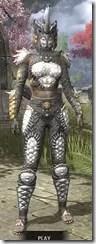 Dead-Water Iron - Khajiit Female Front