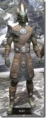 Elder-Argonian-Rawhide-Argonian-Male-Front_thumb.jpg