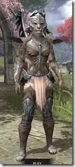 Welkynar-Homespun-Khajiit-Female-Shirt-Front_thumb.jpg