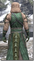 Akaviri Homespun - Argonian Male Robe Close Rear