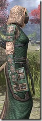 Akaviri Homespun - Khajiit Female Robe Close Side