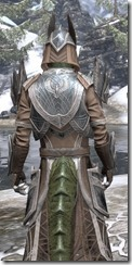 Aldmeri Dominion Homespun - Argonian Male Robe Close Rear